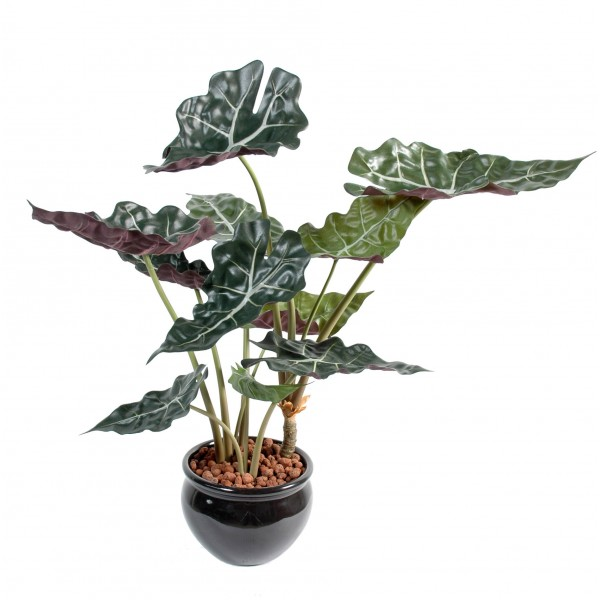 Alocasia Pot – Plante artificielle