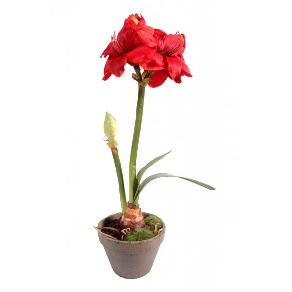 Amaryllis Pot Terre – Composition artificielle