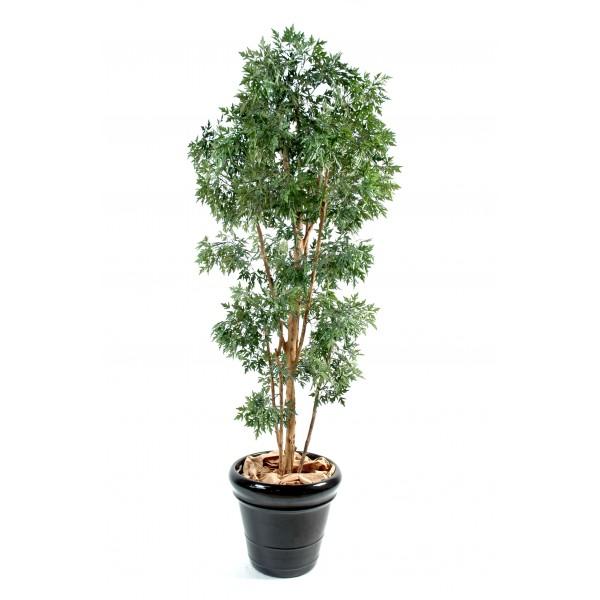 Aralia ming arbre artificiel fleurs plantes artificielles for Arbres artificiels haut de gamme