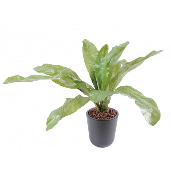 Plantes artificielle prix achat vente en ligne for Plantes achat en ligne