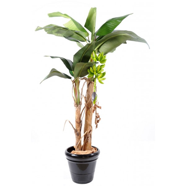 bananier regime arbre artificiel fleurs plantes. Black Bedroom Furniture Sets. Home Design Ideas