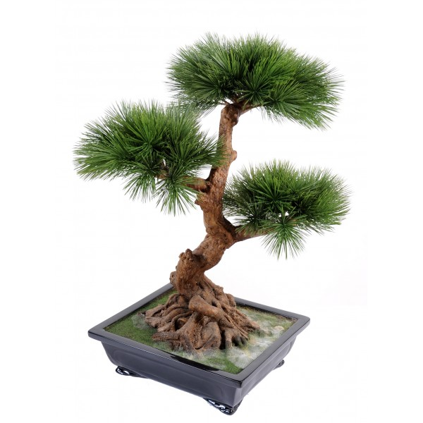Bonsai Pin En Coupe – Arbre artificiel
