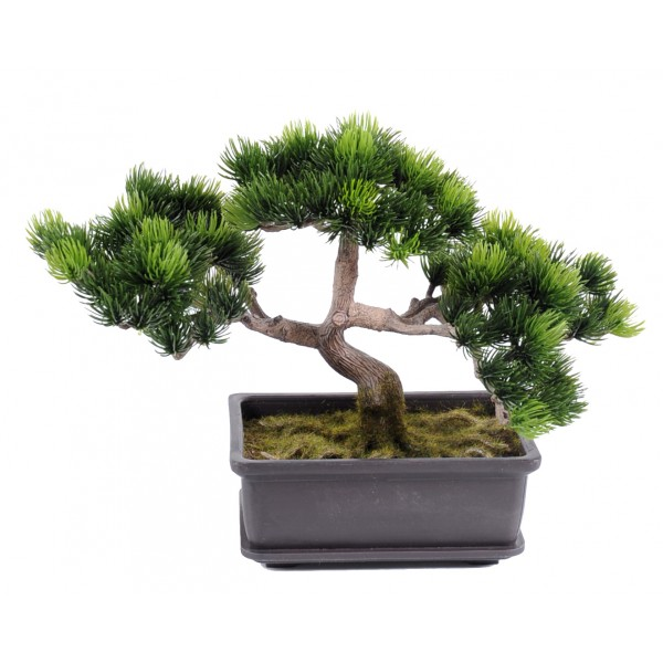Bonsai Pin Mini  22 Cm – Végétal artificiel