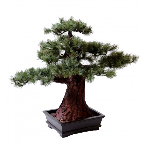 Bonsai Pin – Arbre artificiel