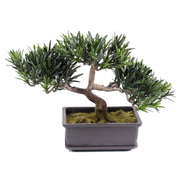 Bonsai Podocarpus Mini  22 Cm – Végétal artificiel