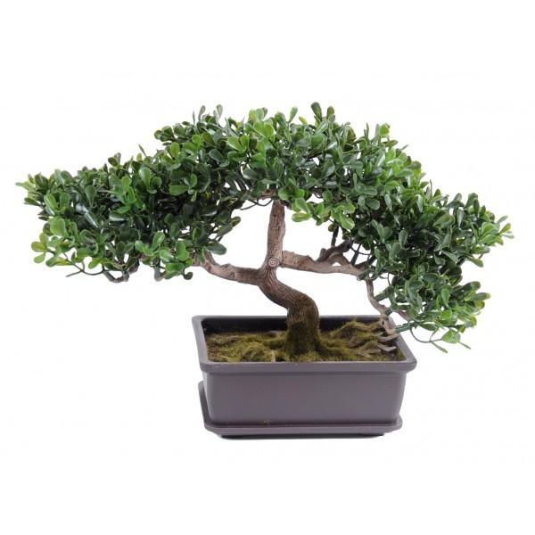 plante verte d 39 int rieur pas cher fleurs plantes artificielles. Black Bedroom Furniture Sets. Home Design Ideas
