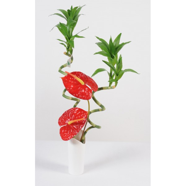 Achat plantes d 39 int rieur fleurs plantes artificielles for Achat plantes artificielles