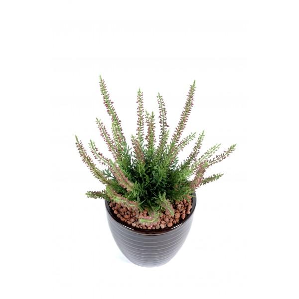 Bois tortueux fleurs plantes artificielles for Plante exterieur plumeau