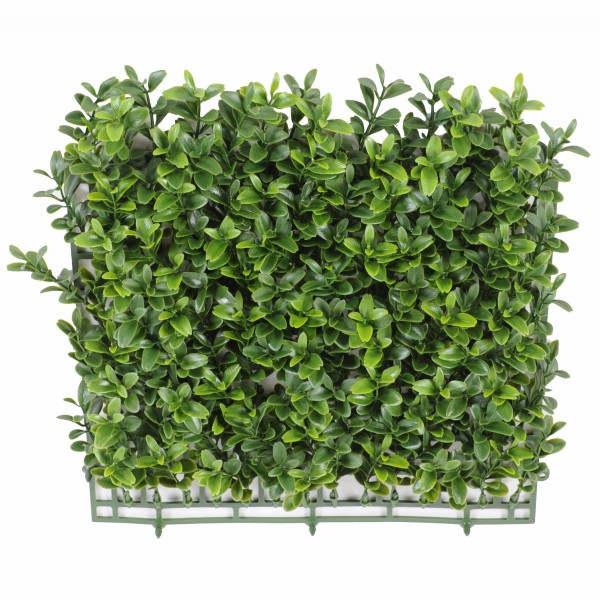 Buis Plaque New *140 – Plante artificielle