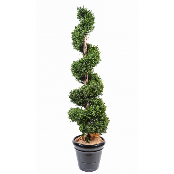 Buis Spirale New – Arbre artificiel