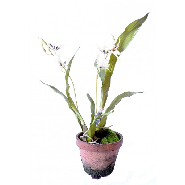 Cambria Orchidee Pot Terre – Composition artificielle