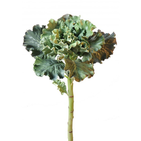 Fleurs artificielles pour ext rieur fleurs plantes for Deco plante artificielle