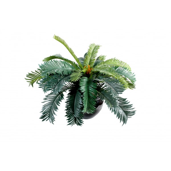 cycas 20f plante artificielle fleurs plantes artificielles. Black Bedroom Furniture Sets. Home Design Ideas