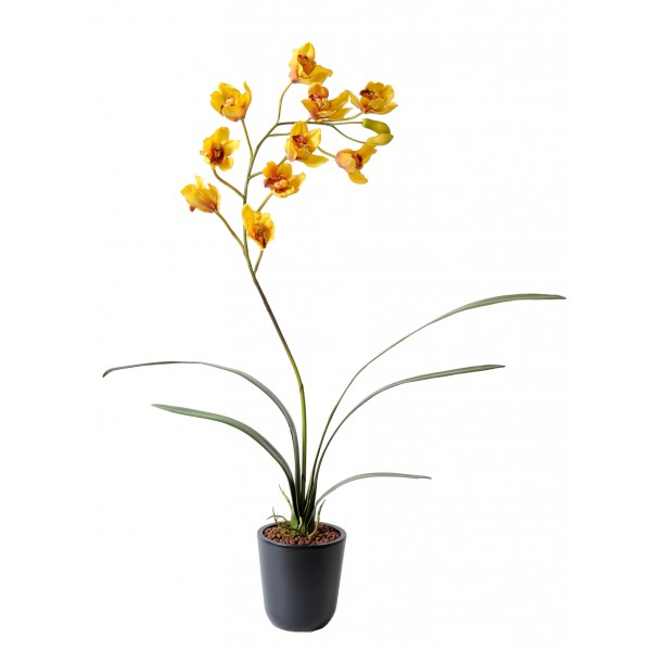 Cymbidium – Plante artificielle