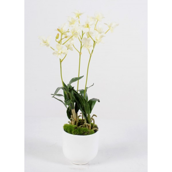 Dendrobium Pot – Composition artificielle