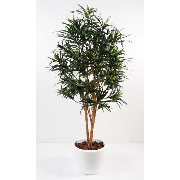 Dracena Anita En Pot Pure Rond – Composition artificielle