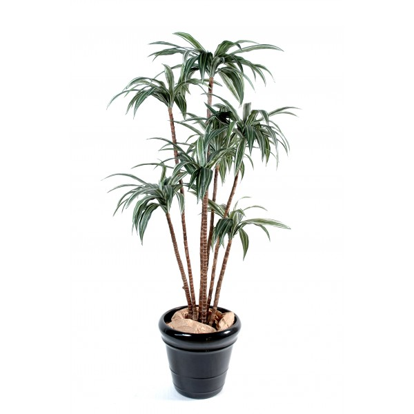 Dracena Tree – Arbre artificiel
