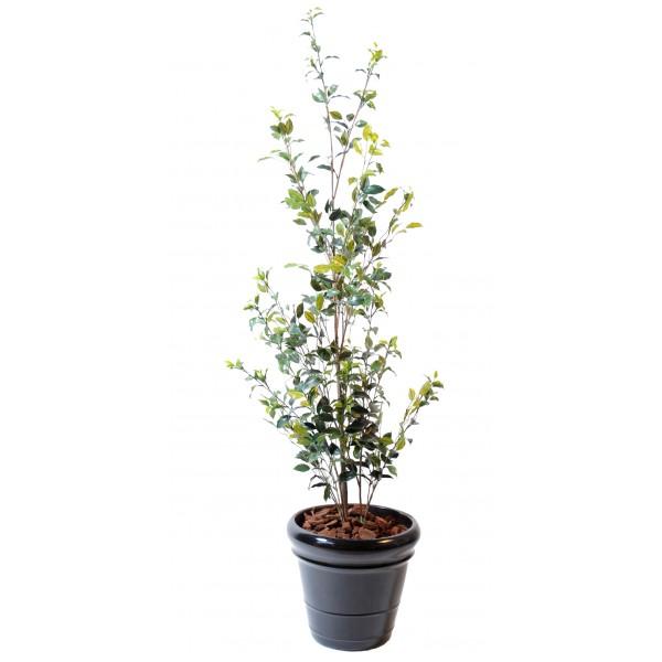 Eucalyptus plast boule arbre artificiel fleurs plantes for Buisson synthetique