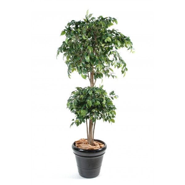Ficus Double Boule – Arbre artificiel