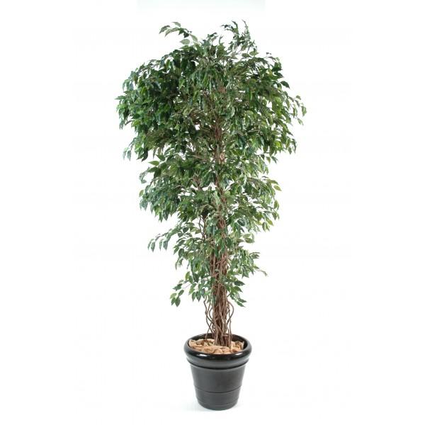 ficus lianes pf arbre artificiel fleurs plantes. Black Bedroom Furniture Sets. Home Design Ideas