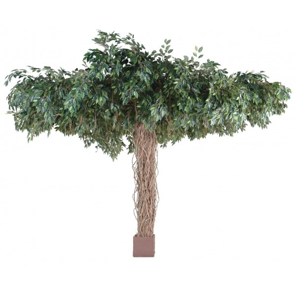 Ficus lianes umbrella arbre artificiel fleurs plantes for Arbre artificiel