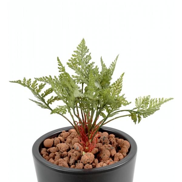 Fougere des bois plante artificielle fleurs plantes for Mini plante verte