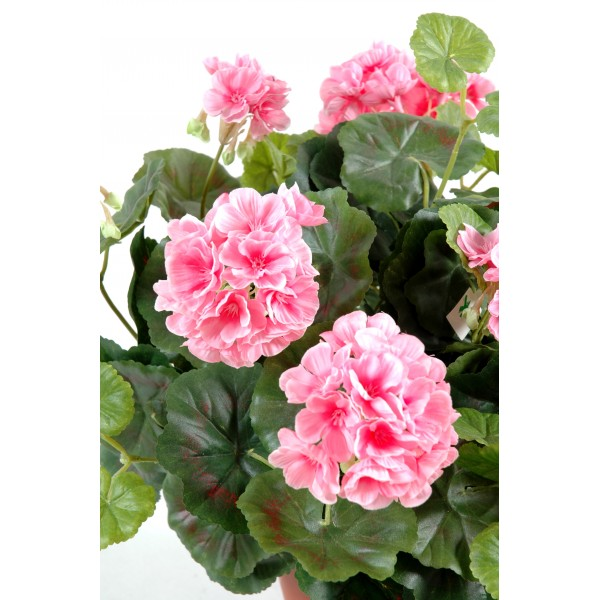 Geranium lierre artificiel prix achat vente en ligne for Achat fleurs et plantes en ligne