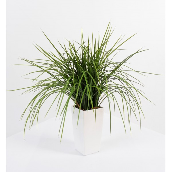 onion grass botte deco plante artificielle fleurs plantes artificielles. Black Bedroom Furniture Sets. Home Design Ideas