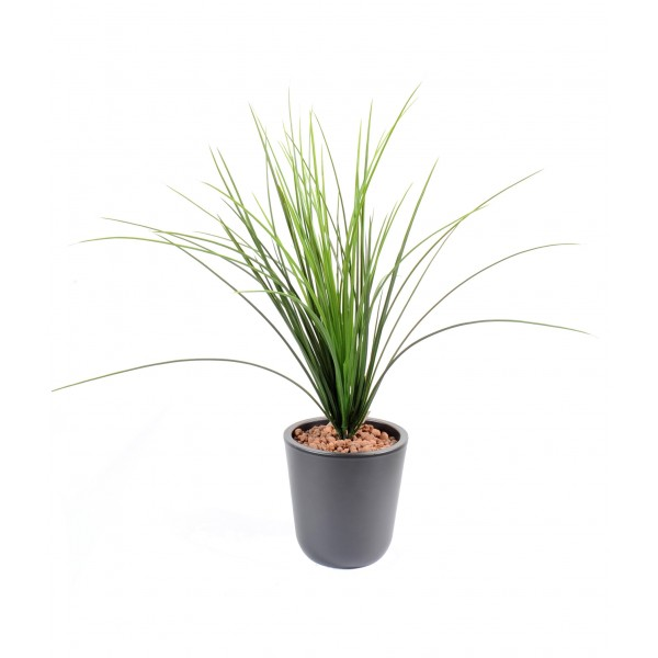 herbe onion grass plast plante artificielle fleurs plantes artificielles. Black Bedroom Furniture Sets. Home Design Ideas