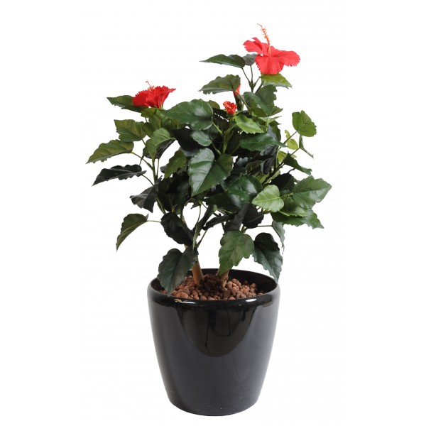 Hibiscus – Arbre artificiel