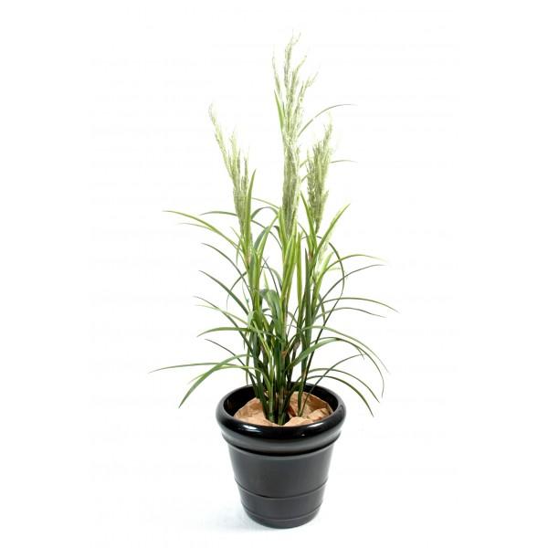 plante verte retombante interieur fleurs plantes artificielles. Black Bedroom Furniture Sets. Home Design Ideas