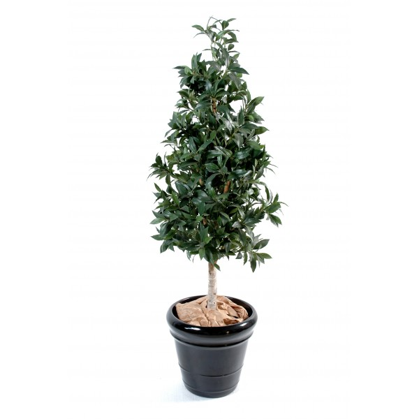 Laurier Pyramide – Arbre artificiel