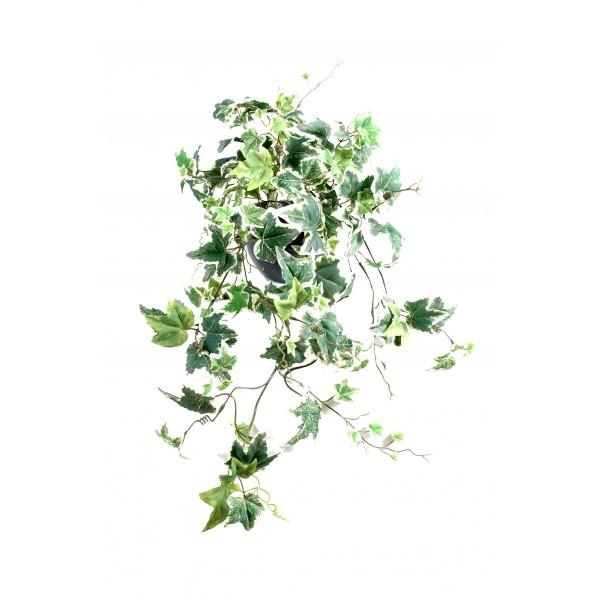 lierre anglais 155 plante artificielle fleurs plantes artificielles. Black Bedroom Furniture Sets. Home Design Ideas