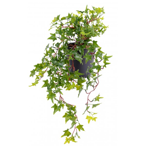 Lierre mini plast v g tal artificiel fleurs plantes for Mini plante artificielle