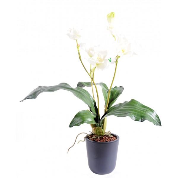 Fleur orchid e artificielle pas cher prix achat for Achat plante en ligne pas cher
