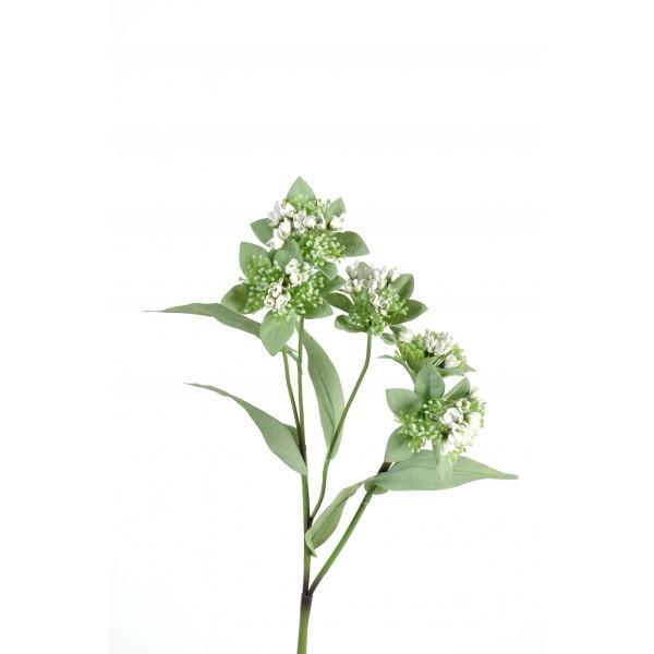 Marogravia 5 fleur artificielle en tige fleurs plantes for Plantes artificielles occasion