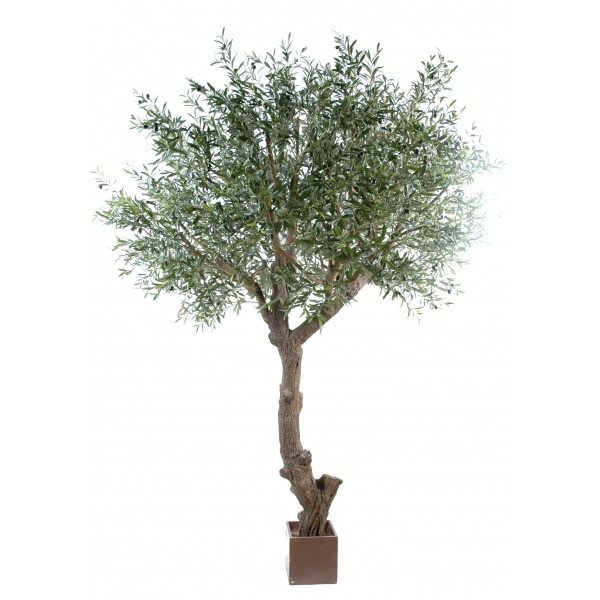 Olivier new tete geant arbre artificiel fleurs plantes for Arbre geant artificiel