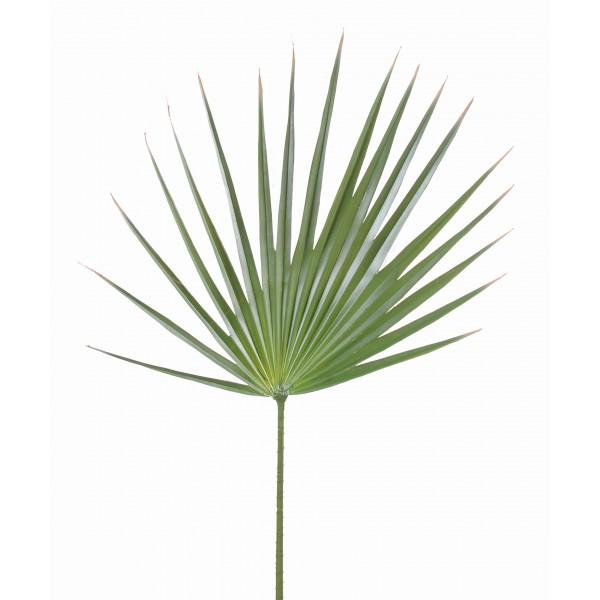 palme washingtonia feuillage artificiel fleurs plantes. Black Bedroom Furniture Sets. Home Design Ideas