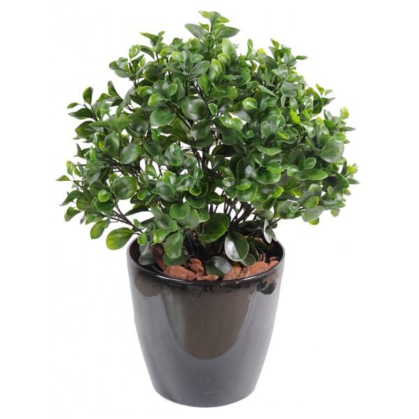 Mur vegetal artificiel exterieur fleurs plantes for Buisson synthetique