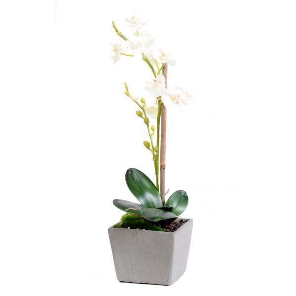 Arbuste artificiel interieur prix achat vente en ligne for Arbuste en ligne