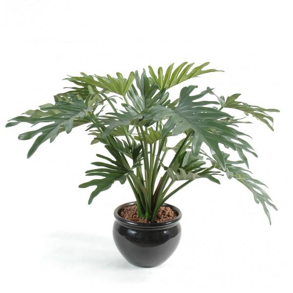 Philodendron selloum plante artificielle fleurs for Plante exterieur plumeau