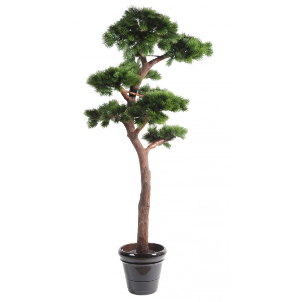Pin Bonsai Uv Resistant – Végétal artificiel