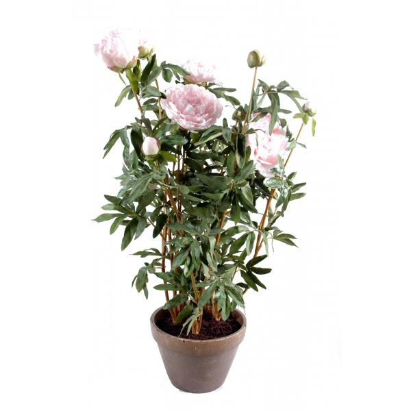 Pivoine Pot Terre – Composition artificielle