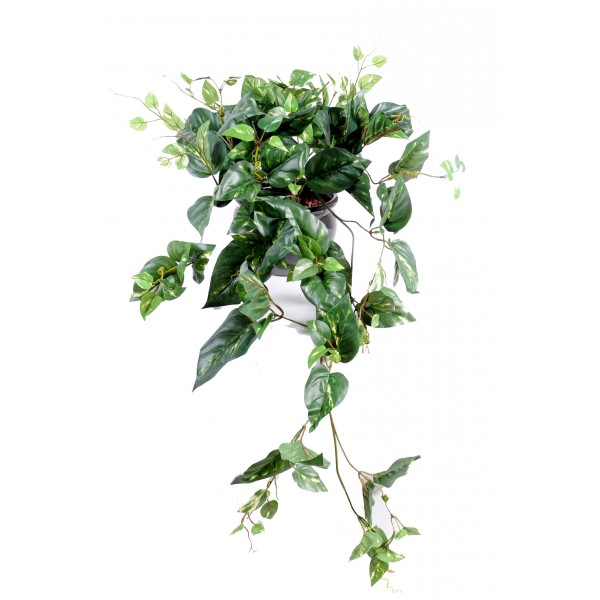 Plante grimpante artificielle for Plante verte tombante interieur