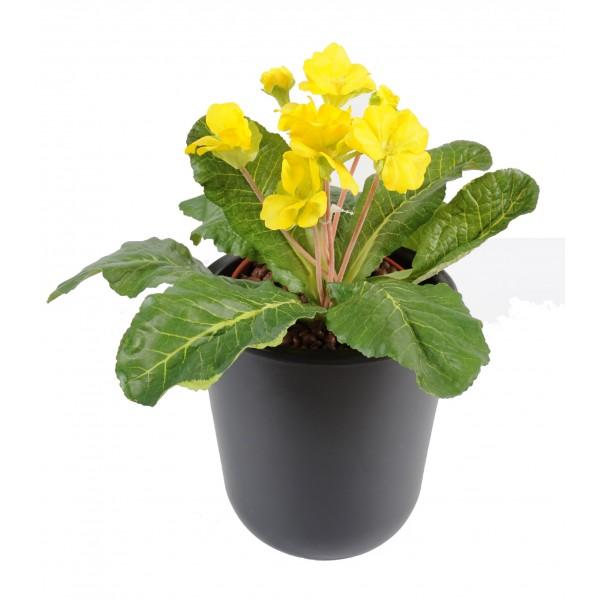 fleurs artificielles paris fleurs plantes artificielles. Black Bedroom Furniture Sets. Home Design Ideas