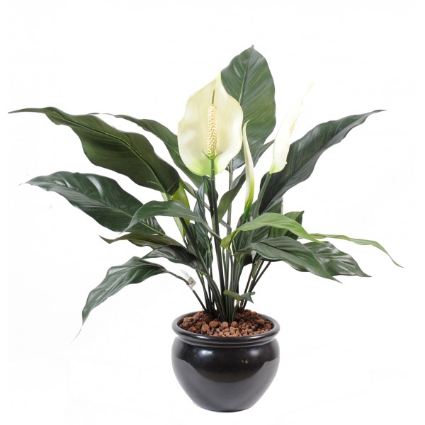Spathiphyllum*2Fl*1Bt Pot – Plante artificielle