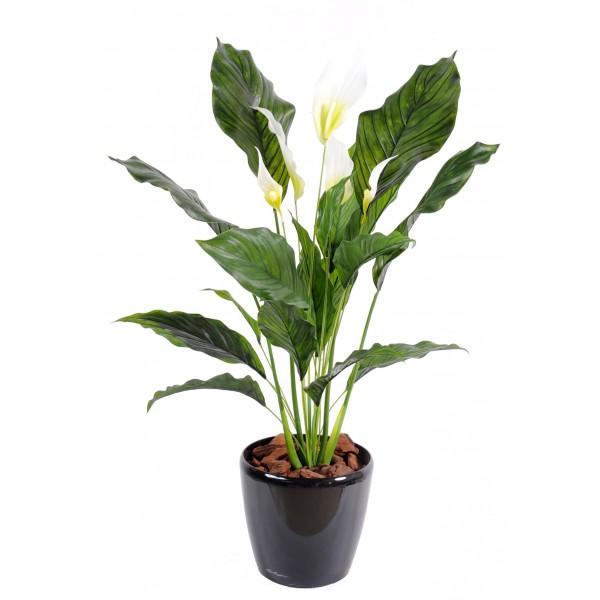 Spathiphyllum plast 5 fl plante artificielle fleurs for Belle plante exterieur