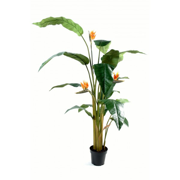 Strelitzia Tree – Arbre artificiel