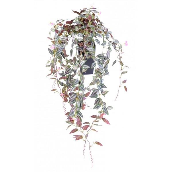 Tradescantia fleuri chute 516 plante artificielle fleurs plantes artifi - Plante tombante interieur ...